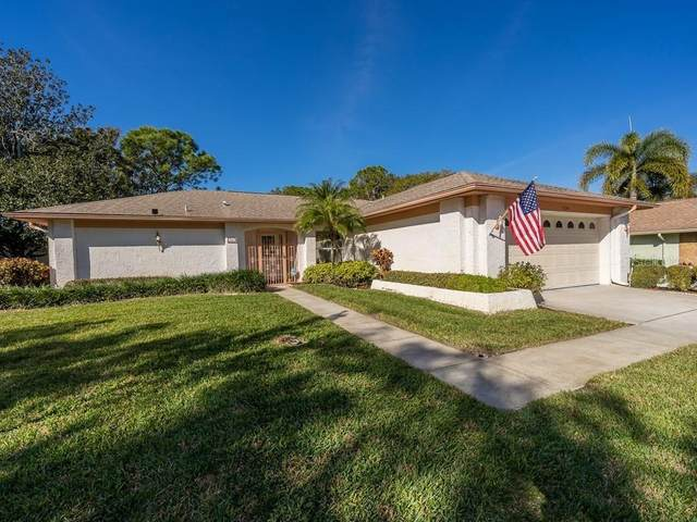 1681 Macdonnell Court, Palm Harbor, FL 34684 (MLS #T3286062) :: Gate Arty & the Group - Keller Williams Realty Smart