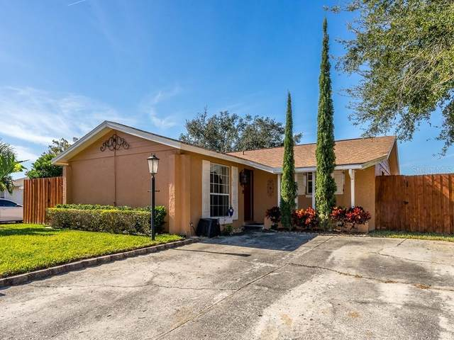 8606 Spartan Court, Tampa, FL 33634 (MLS #T3286063) :: New Home Partners