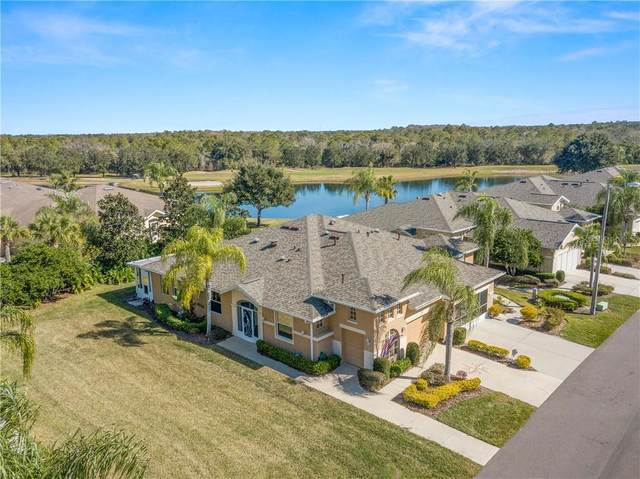 1947 Inverness Greens Drive #0, Sun City Center, FL 33573 (MLS #T3286065) :: Visionary Properties Inc