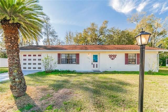 5623 Muse Court, Zephyrhills, FL 33542 (MLS #T3286082) :: Frankenstein Home Team