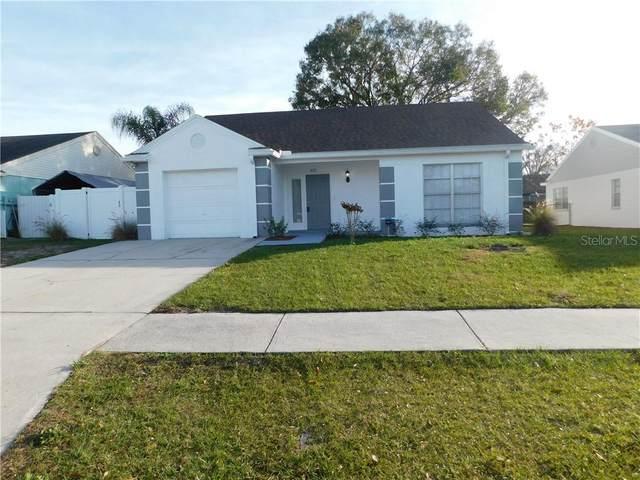 6111 Morningview Drive, Lakeland, FL 33813 (MLS #T3286084) :: Dalton Wade Real Estate Group