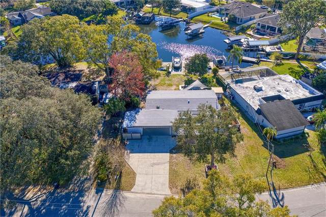10607 Carrollwood Drive, Tampa, FL 33618 (MLS #T3286086) :: Griffin Group