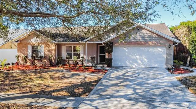 2816 Timberway Place, Brandon, FL 33511 (MLS #T3286127) :: Griffin Group
