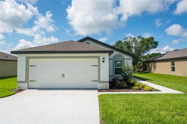 14323 Coralbean Court, Brooksville, FL 34613 (MLS #T3286131) :: Griffin Group