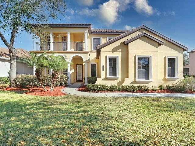 8322 Windsor Bluff Drive, Tampa, FL 33647 (MLS #T3286138) :: The Light Team