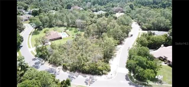 6121 Waters Way, Weeki Wachee, FL 34607 (MLS #T3286148) :: Armel Real Estate