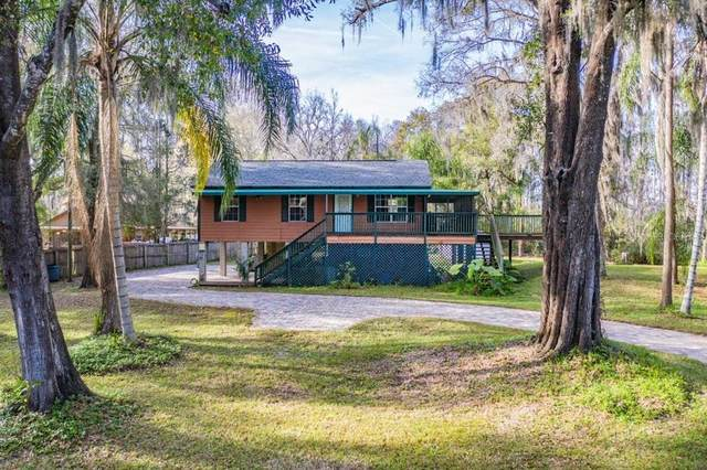 19217 Lake Allen Road, Lutz, FL 33558 (MLS #T3286179) :: Team Bohannon Keller Williams, Tampa Properties