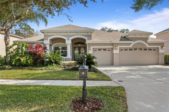 6614 Thornton Palms Drive, Tampa, FL 33647 (MLS #T3286189) :: Griffin Group