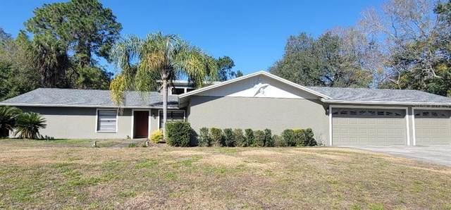 19908 Jodi Drive, Lutz, FL 33558 (MLS #T3286206) :: Young Real Estate