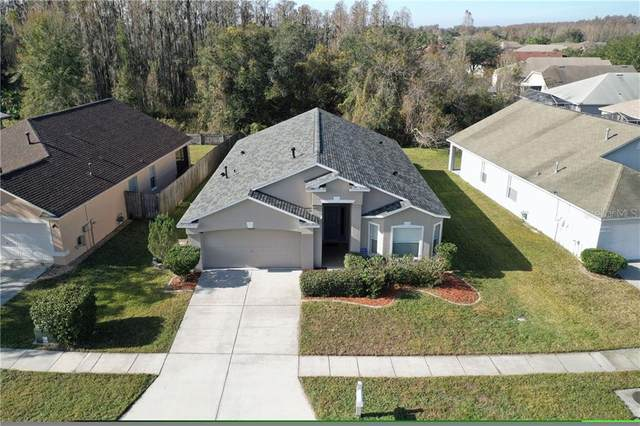 1235 Katahdin Court, Wesley Chapel, FL 33543 (MLS #T3286217) :: Young Real Estate