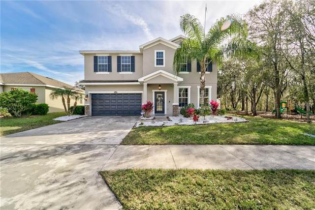 2812 Holly Bluff Court, Plant City, FL 33566 (MLS #T3286274) :: Dalton Wade Real Estate Group