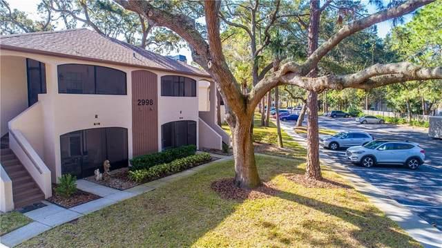 2998 Bonaventure Circle #201, Palm Harbor, FL 34684 (MLS #T3286280) :: Godwin Realty Group