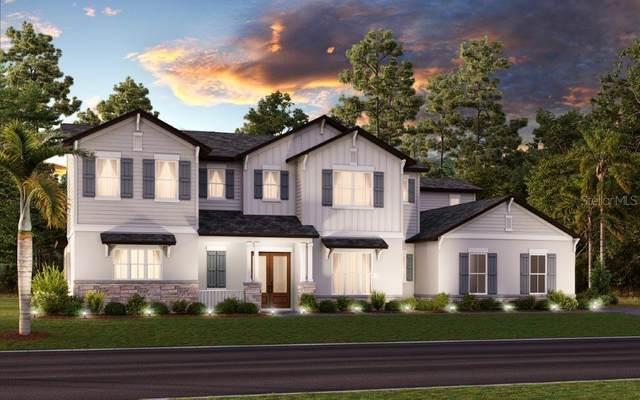 3709 W Barcelona Street, Tampa, FL 33629 (MLS #T3286363) :: Team Bohannon Keller Williams, Tampa Properties
