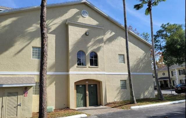 5003 Sunridge Palms Drive, Tampa, FL 33617 (MLS #T3286415) :: Team Bohannon Keller Williams, Tampa Properties