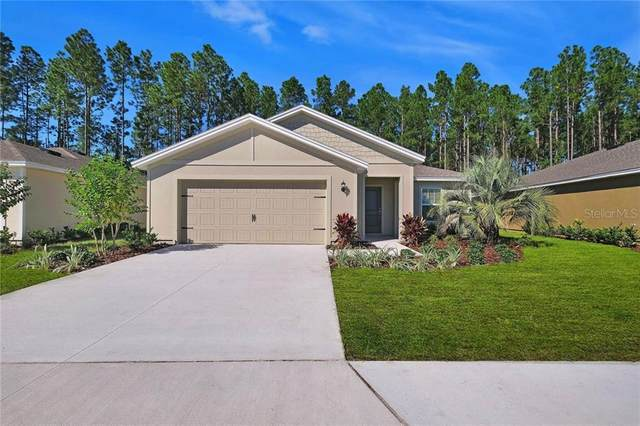 1970 Amber Sweet Circle, Dundee, FL 33838 (MLS #T3286417) :: Everlane Realty