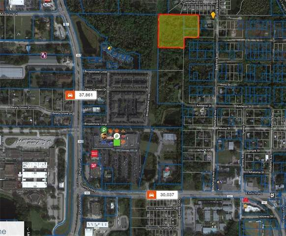 Antilla Road, Tampa, FL 33625 (MLS #T3286423) :: Prestige Home Realty