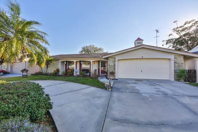 3930 Glissade Drive, New Port Richey, FL 34652 (MLS #T3286429) :: Frankenstein Home Team