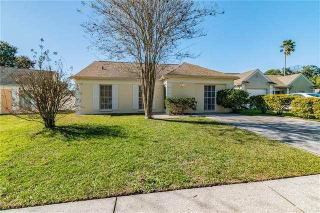 1661 Palm Leaf Drive, Brandon, FL 33510 (MLS #T3286447) :: Team Borham at Keller Williams Realty