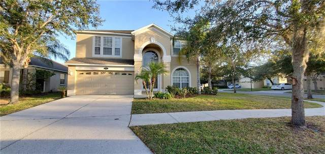 20201 Still Wind Drive, Tampa, FL 33647 (MLS #T3286465) :: Cartwright Realty