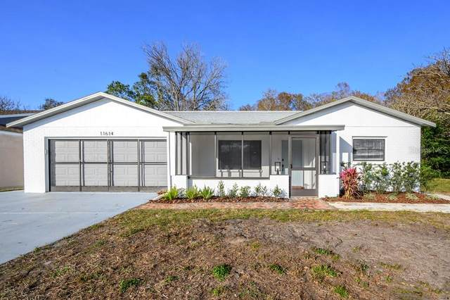 11614 Fox Run, Port Richey, FL 34668 (MLS #T3286471) :: McConnell and Associates