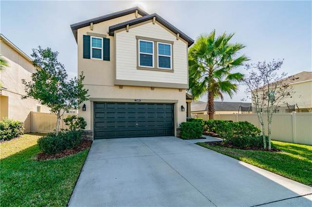 21404 Starry Eyes Way, Land O Lakes, FL 34637 (MLS #T3286482) :: Gate Arty & the Group - Keller Williams Realty Smart