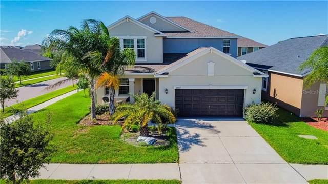 11802 Valhalla Woods Drive, Riverview, FL 33579 (MLS #T3286510) :: Pristine Properties