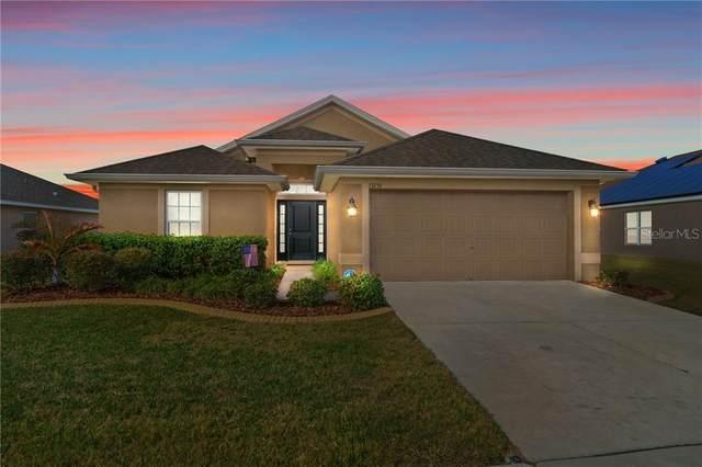 13256 Niti Drive, Hudson, FL 34669 (MLS #T3286531) :: New Home Partners