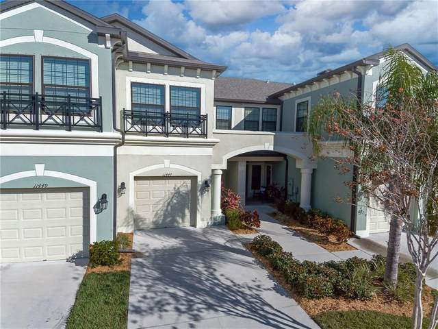 11447 Crowned Sparrow Lane, Tampa, FL 33626 (MLS #T3286532) :: Team Bohannon Keller Williams, Tampa Properties