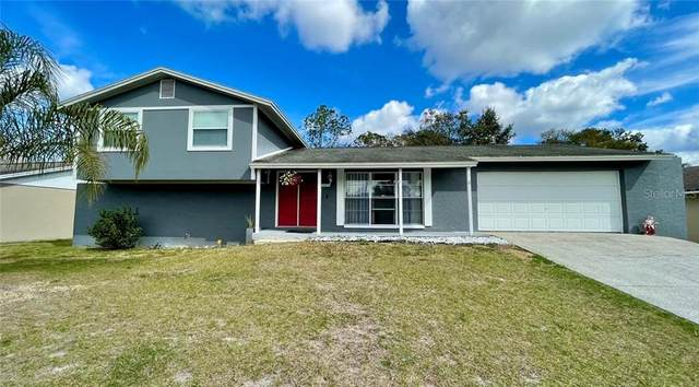 4004 Briarlake Drive, Valrico, FL 33596 (MLS #T3286535) :: Armel Real Estate