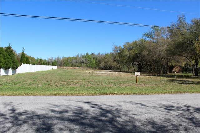 5703 Lake Le Clare Road, Lutz, FL 33558 (MLS #T3286575) :: Griffin Group