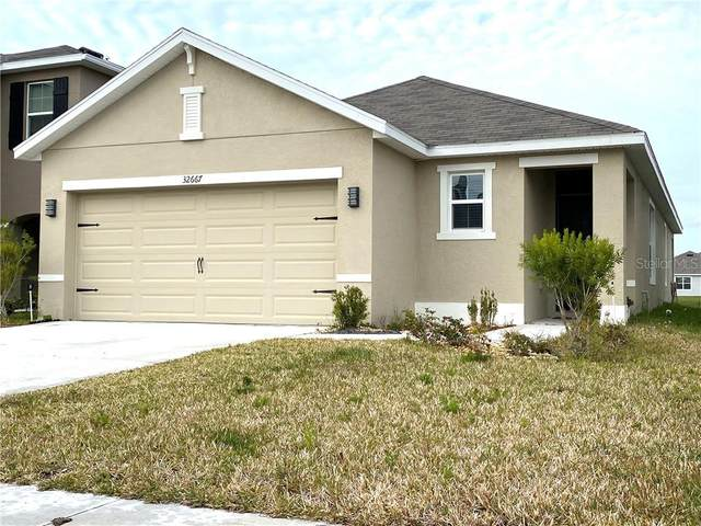 32667 Dashel Palm Lane, Wesley Chapel, FL 33543 (MLS #T3286593) :: The Duncan Duo Team