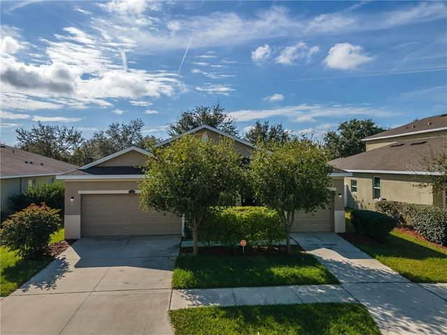 12422 Fairlawn Drive, Riverview, FL 33579 (MLS #T3286610) :: Everlane Realty