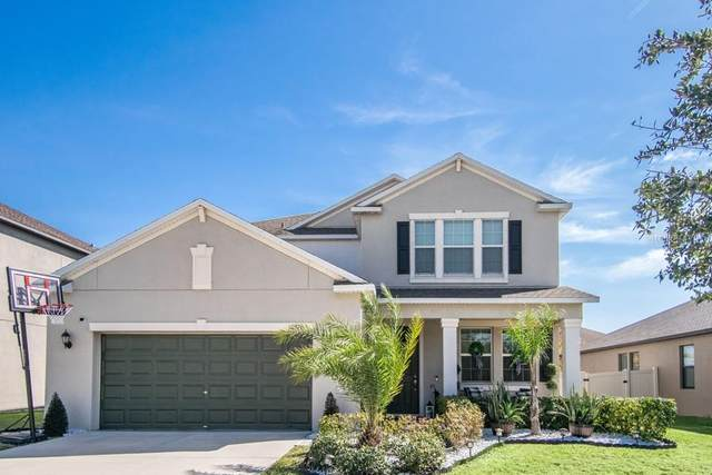 10919 Purple Martin Boulevard, Riverview, FL 33579 (MLS #T3286684) :: Everlane Realty