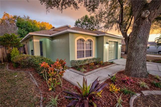 7235 Bellingham Oaks Boulevard, Tampa, FL 33634 (MLS #T3286697) :: Delta Realty, Int'l.