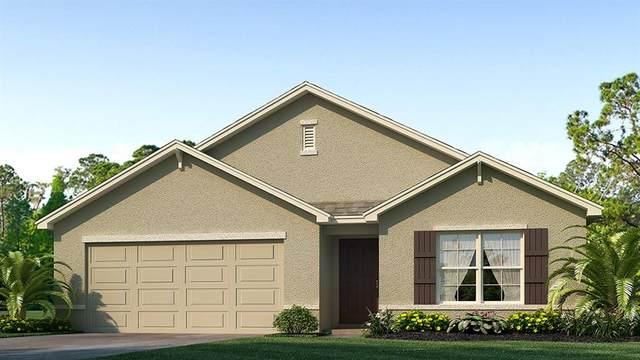 1901 9 Street SE, Ruskin, FL 33570 (MLS #T3286738) :: Memory Hopkins Real Estate