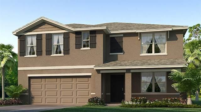 1719 9 Street SE, Ruskin, FL 33570 (MLS #T3286745) :: Memory Hopkins Real Estate