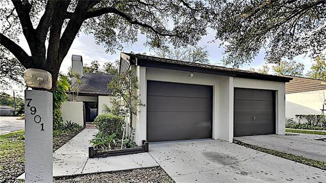 7901 Luxbury Place, Tampa, FL 33614 (MLS #T3286757) :: The Lersch Group