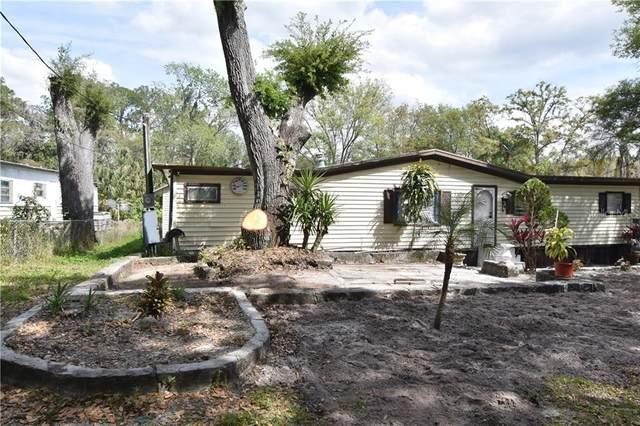 11410 Sweet Fern Drive, Riverview, FL 33569 (MLS #T3286843) :: Vacasa Real Estate