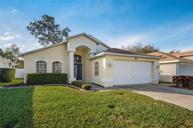11532 Leda Lane, New Port Richey, FL 34654 (MLS #T3286857) :: Cartwright Realty