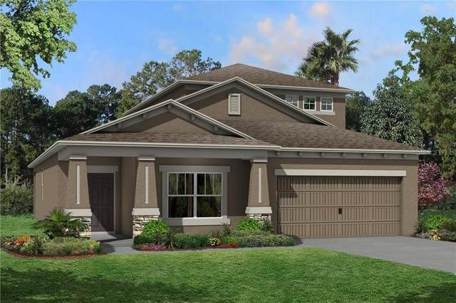 16124 Monterey Greens Circle, Tampa, FL 33647 (MLS #T3286868) :: Cartwright Realty