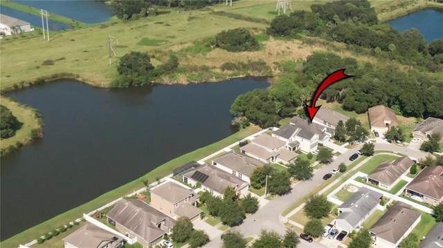 7147 Forest Mere Drive, Riverview, FL 33578 (MLS #T3286919) :: Frankenstein Home Team