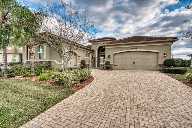 2468 Coco Palm Circle, Wesley Chapel, FL 33543 (MLS #T3286930) :: Cartwright Realty