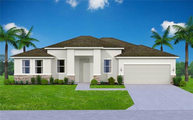 680 Weaver Road SW, Palm Bay, FL 32908 (MLS #T3286958) :: Team Buky