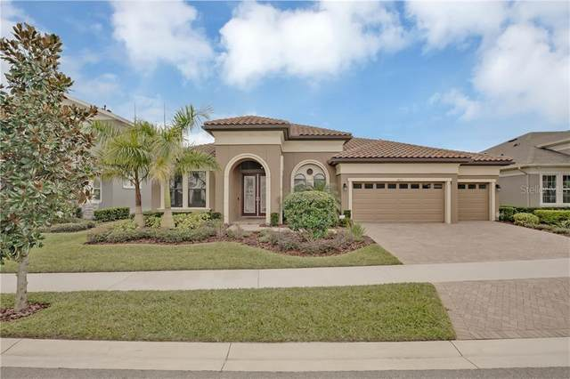 14213 Quintessa Lane, Lithia, FL 33547 (MLS #T3286993) :: Pepine Realty