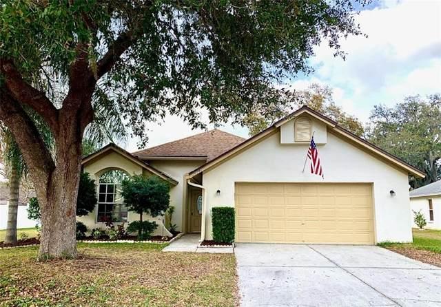 28749 Raleigh Place, Wesley Chapel, FL 33545 (MLS #T3287021) :: Team Bohannon Keller Williams, Tampa Properties