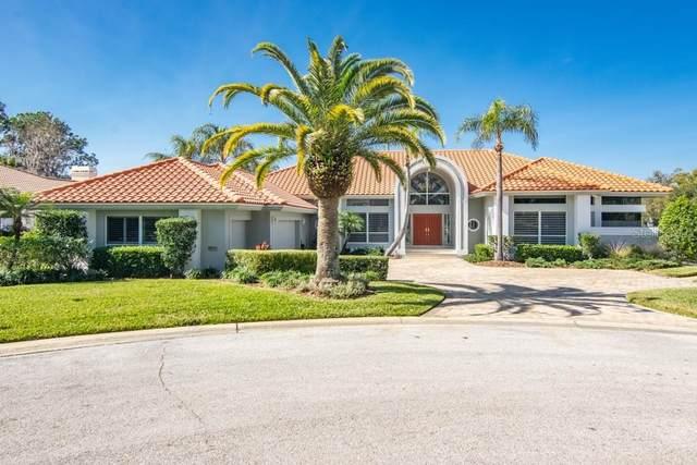 5435 Blue Heron Lane, Wesley Chapel, FL 33543 (MLS #T3287055) :: Team Bohannon Keller Williams, Tampa Properties