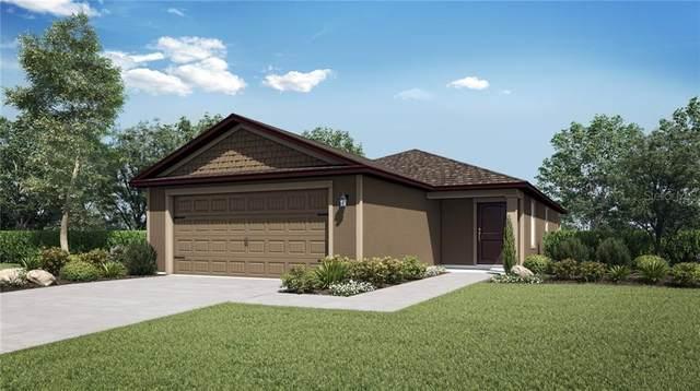 30141 Fedora Circle, Brooksville, FL 34602 (MLS #T3287142) :: Team Buky