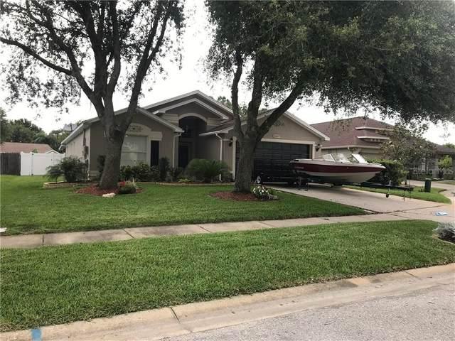 28807 Skyglade Place, Wesley Chapel, FL 33543 (MLS #T3287148) :: Team Bohannon Keller Williams, Tampa Properties