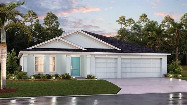 4391 Holstein Street, Saint Cloud, FL 34772 (MLS #T3287195) :: Team Bohannon Keller Williams, Tampa Properties