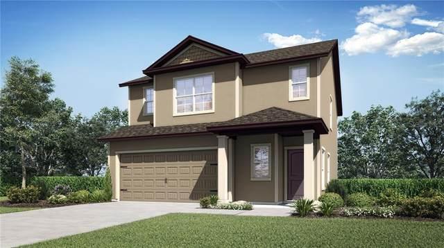 30133 Fedora Circle, Brooksville, FL 34602 (MLS #T3287313) :: Team Buky